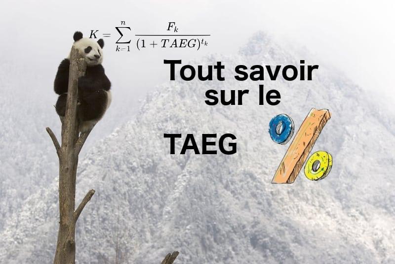 Tout savoir taeg