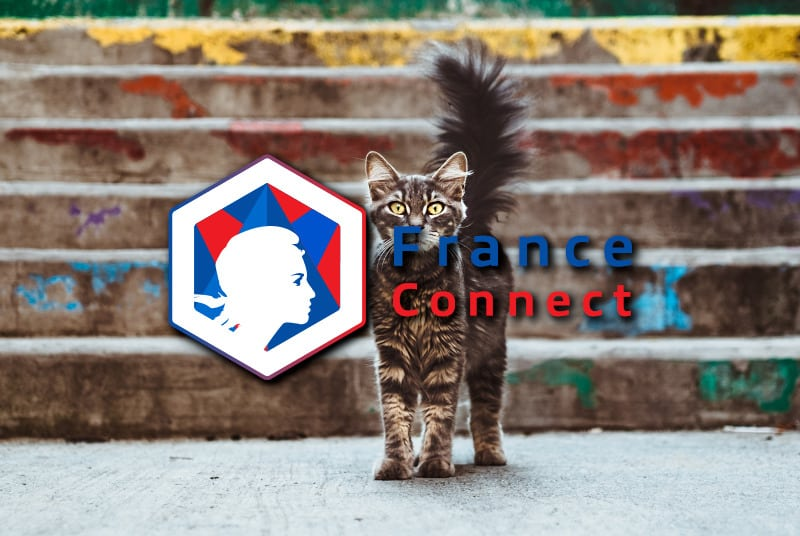franceconnect definition